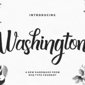 Washington plus bonus introsale 419489 icon
