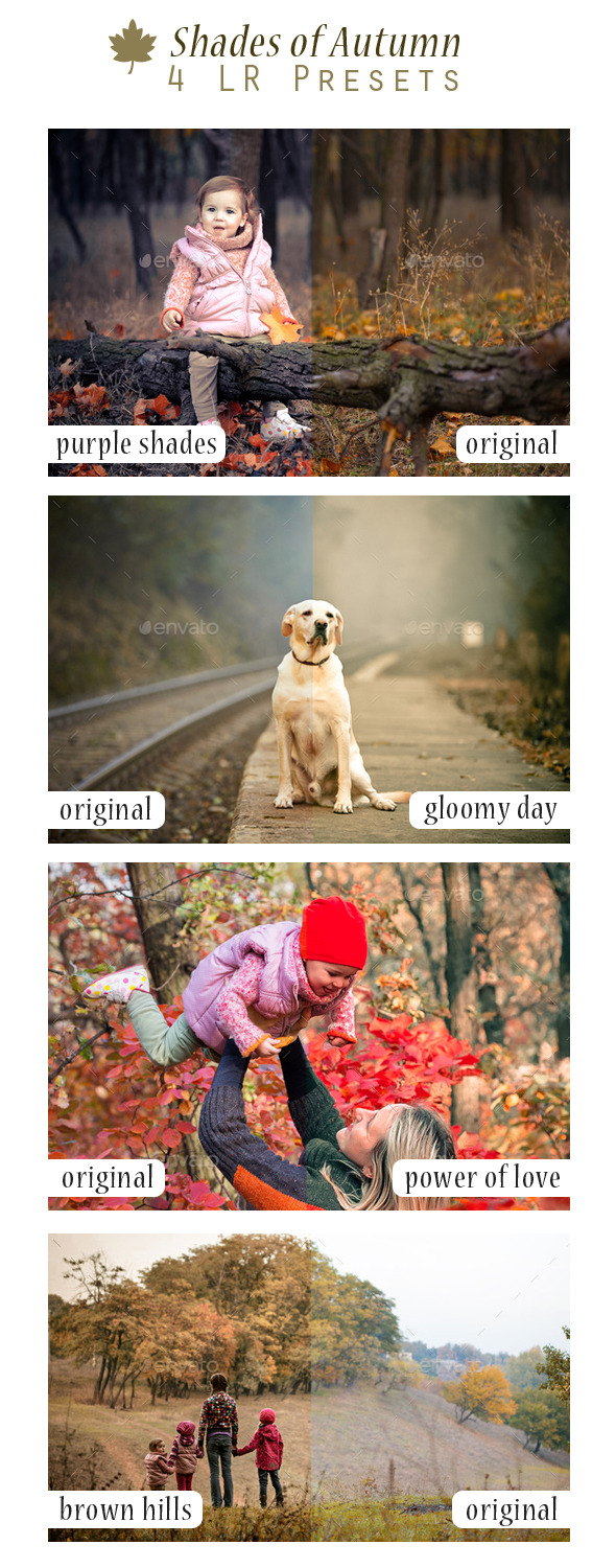 shades_of_autumn_4_lr_presets