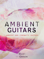 Dieguis productions ambient guitars icon