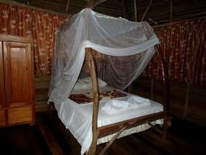 Belize Jungle Camp for Sale Bedroom