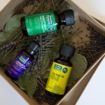 Thursday Plantation Essential Oils: Tea Tree, Lavender, Eucalyptus