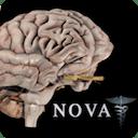 Brain Pro 1.0
