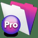 FileMaker Pro 13.0.1