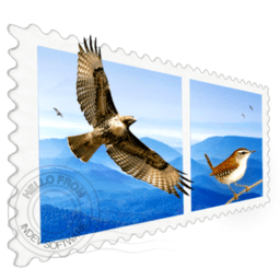 Mail Perspectives 2.2