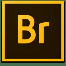 Adobe Bridge CC 2018 8.0.0