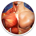 Human Anatomy 3D 4.0.0