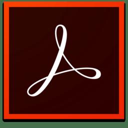 Adobe Acrobat Pro DC 18.011.20040
