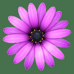 TextMate 2.0.rc.19