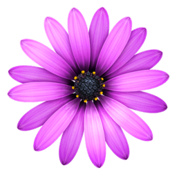 TextMate 2.0.rc.23