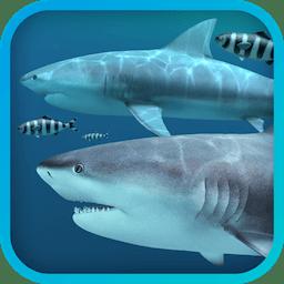 Sharks 3D 2.0.0