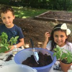 Summer Garden Program Pre-school