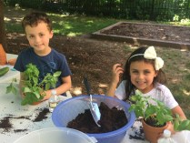 Summer Garden Program Pre-school