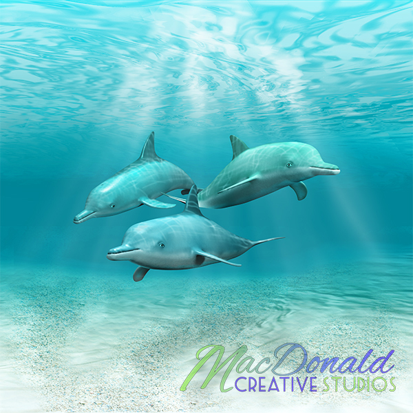 A pod of dolphins swimming in the clear blue ocean.