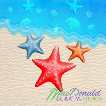 3 starfish and seashells.