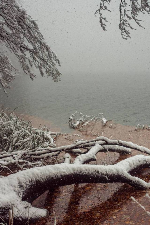 Snow. Falling into the lake. X1