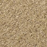Mohawk Carpet | Mohawk Carpet Flooring - Aladdin 01
