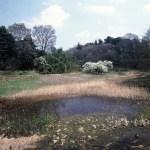 高尾宮岡の景観地