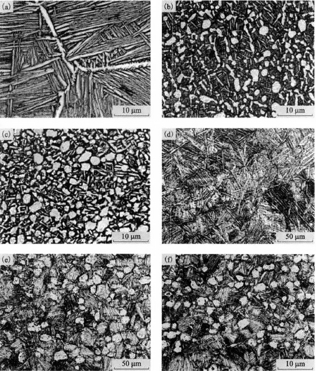 The effect of heat treatment on the microstructure of a typical titanium alloy