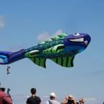 Journées du vent: Festival de cerf-volant à Penvins