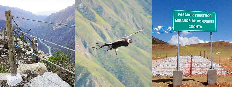 condor-sighting-cusco-chonta-canyon-tour-machu-picchu-andes-tours
