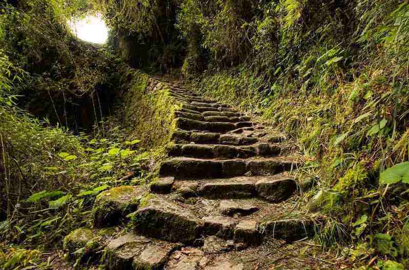 Inca Jungle Trek to Machu Picchu - Inca Jungle Trek 4 Days