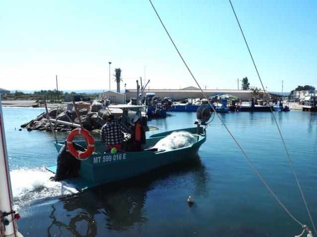 - Escales patrimoine Marignane - Centre nautique - Les pêcheurs