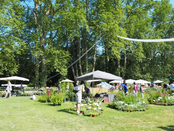 Les Journées des plantes d'Albertas -