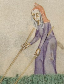 Elderly woman working the harvest wearing a cote and an open hood over a viel, c. 1325-1340