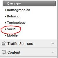 How to Add Google +1 Button to Your WordPress Blog and Track Social Media Engagement With Google Analytics