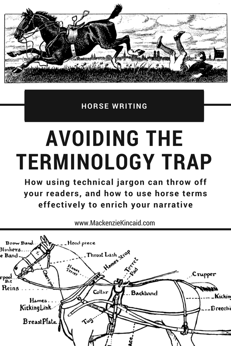 Horse Writing: Avoiding the Terminology Trap