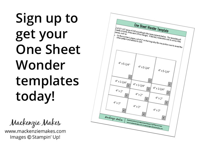 One Sheet Wonder Card Set with Floral Boutique DSP