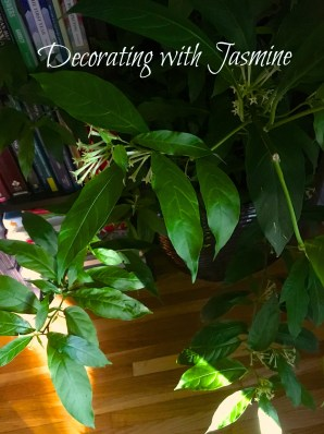 decorating-with-jasmine-2