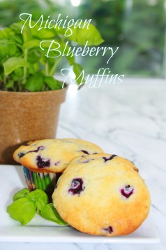 Michigan Blueberry Muffins