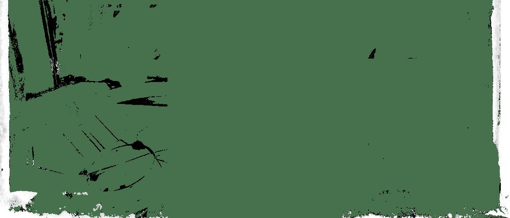 medium resolution of alt text