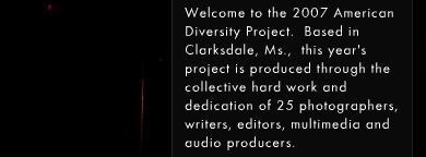 2007 American Diversity Project