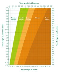 Bmi Scale Chart Nhs - Weight loss bros | ayUCar.com