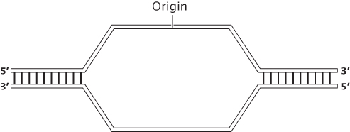 Solved: Problem Statement The Following Diagram Represents