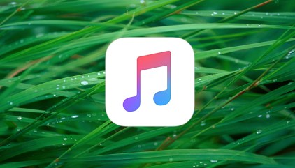 Edit Playlist Columns in iTunes 12 4 and Later - The Mac