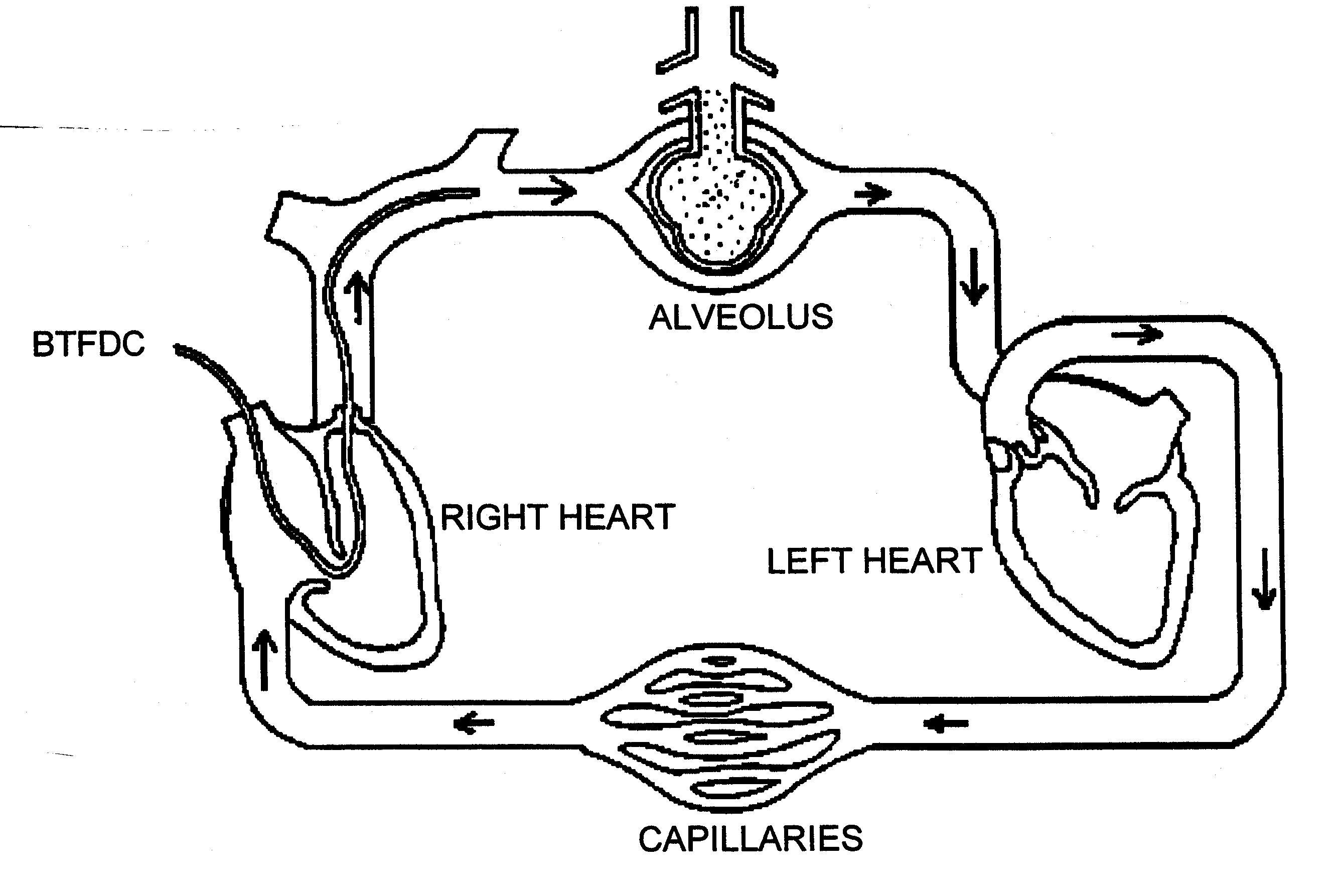 how to draw system flow diagram car turning radius heart and lungs labeled of the circulatory