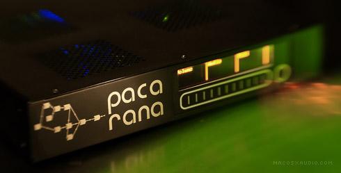 te_paca3-490