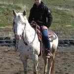 gite equestre en haute loire