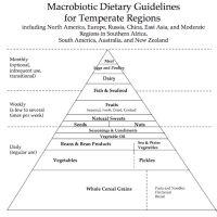 The Basic Macrobiotic Food Categories