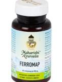 Ferromap - Integratore Alimentare a base di Piante, derivati e minerali