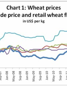 Chart provides information on wheat prices in global trade as well retail of flour domestic markets four south asian countries also macroscan printable version food price transmission asia rh