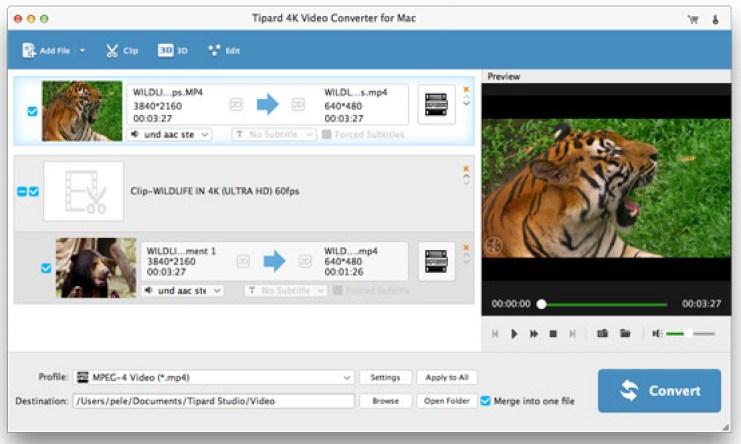 Tipard 4K Video Converter mac