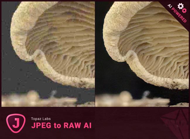 Topaz JPEG to RAW