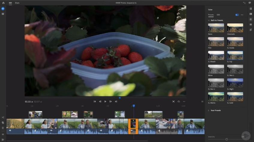 Adobe Premiere Rush CC Mac