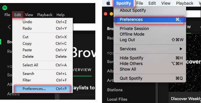 Open Spotify Preferences