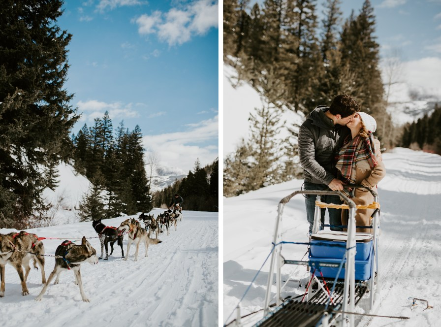 Yellowstone dogsled adventures