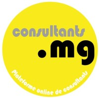 Consultant.mg